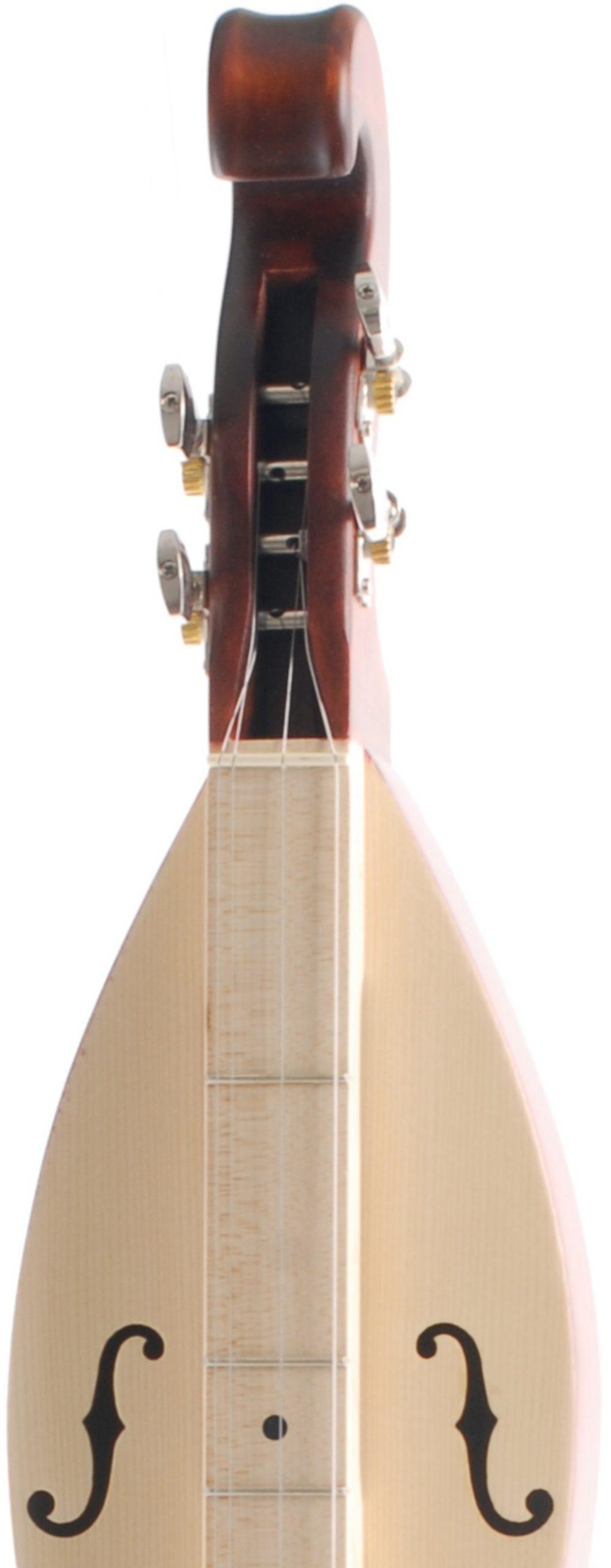 APPALACHIAN DULCIMER GRANDE TOP ABETE FONDO LIME FASCE E MANICO ACERO SCALA 68,5CM CON BORSA 6