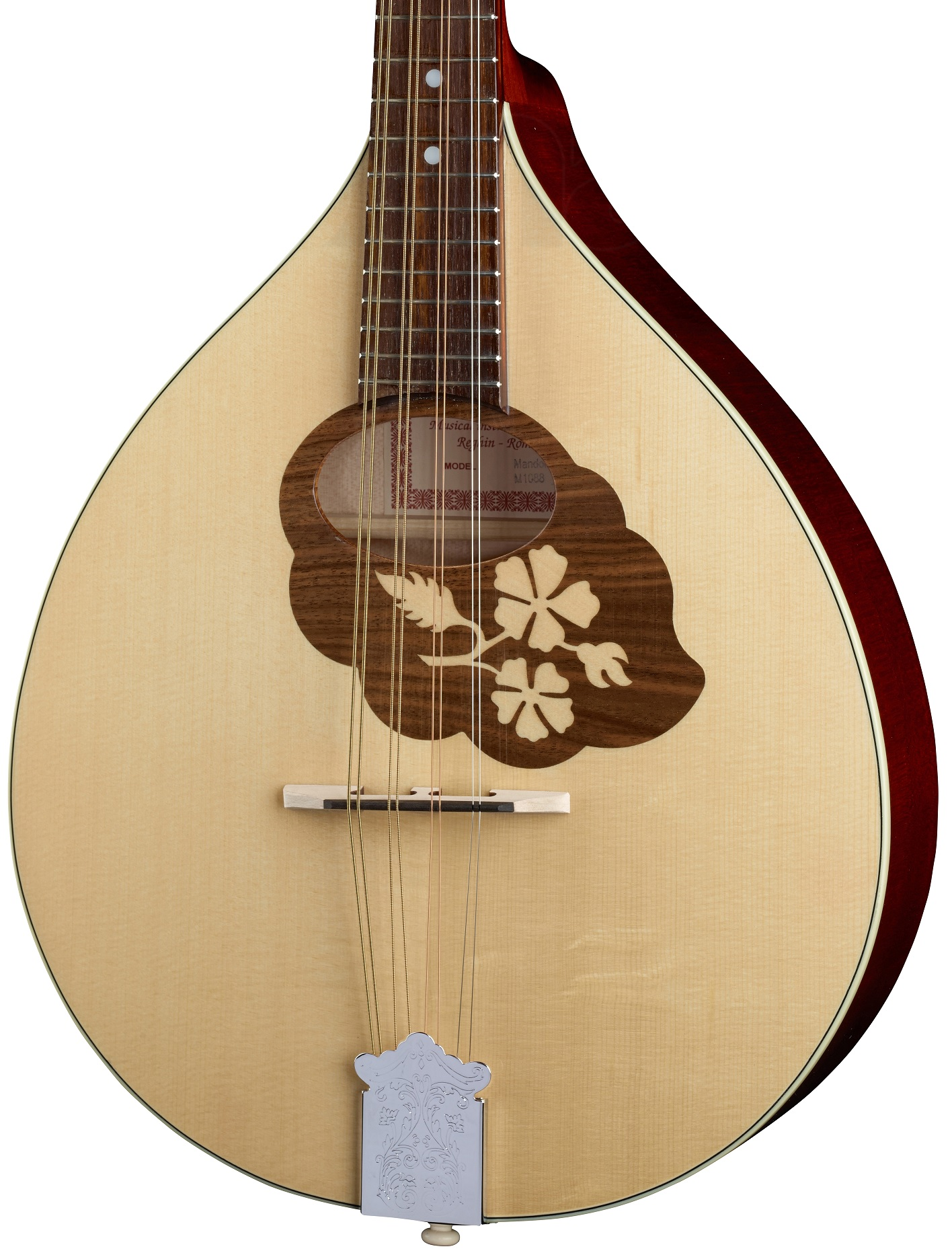 MANDOLA CONTRALTO IRLANDESE RGII MADE IN EUROPE ( MANDOLINO ) MASSELLO TOP ABETE FONDO ACERO MASSELLO FASCE MANICO ACERO SCALA 402mm 6