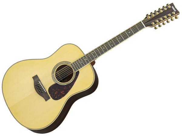 Chitarra Accompagnamento: Come Suonare una Chitarra a 12 Corde